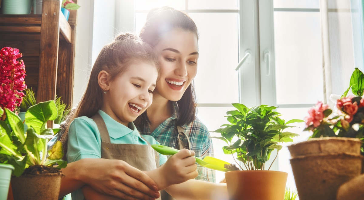 Комнатные растения и дети фото