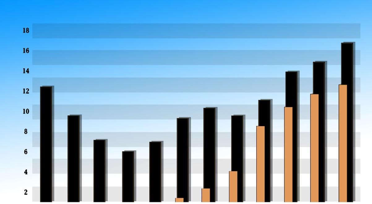 Szara Strefa 192 Proc PKB W Tym Roku Jakie Straty Przyniesie