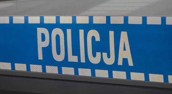 Policja Logo DOB 663.JPG