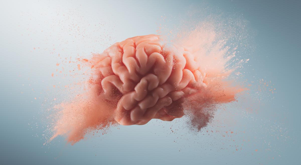 mózg psychologia 1200.jpg