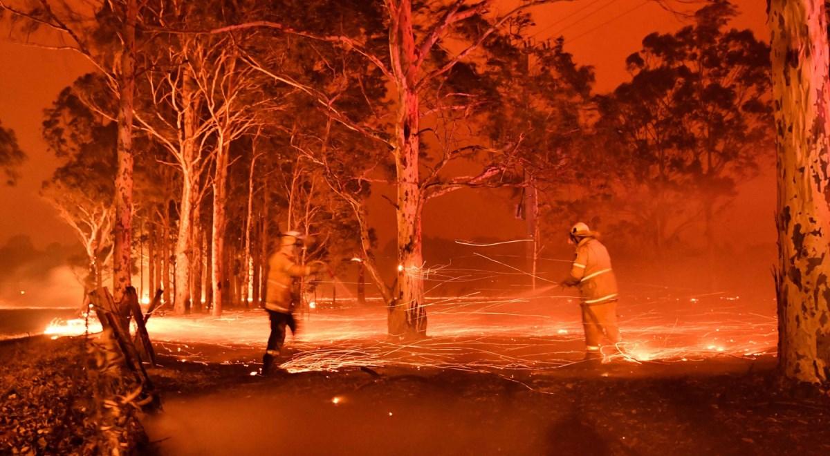 """Australia wciąż płonie. Miliardy na """"odbudowę kraju ze zniszczeń"""""""