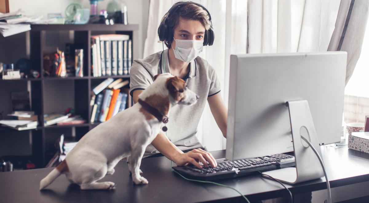 kwarantanna koronawirus maseczka izolacja pies praca zdalna 1200.jpg