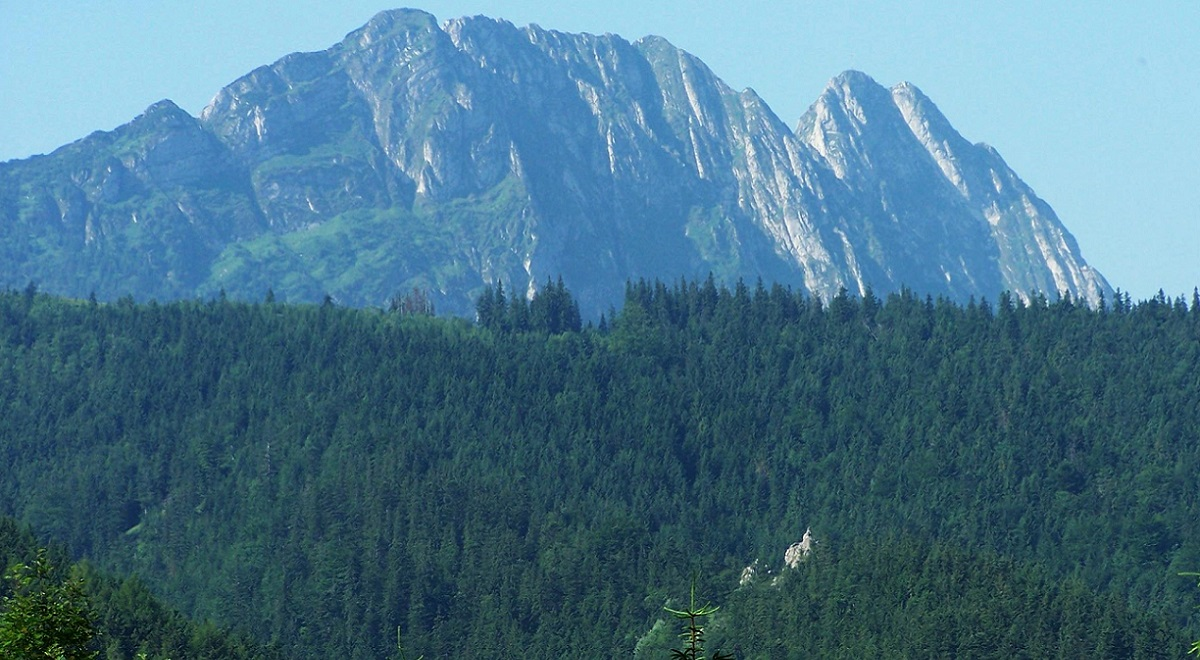Mount Giewont in Polands southern Tatra mountains. Photo: Opioła Jerzy, GFDL (http:www.gnu.orgcopyleftfdl.html), CC-BY-SA-3.0 (http:creativecommons.orglicensesby-sa3.0)