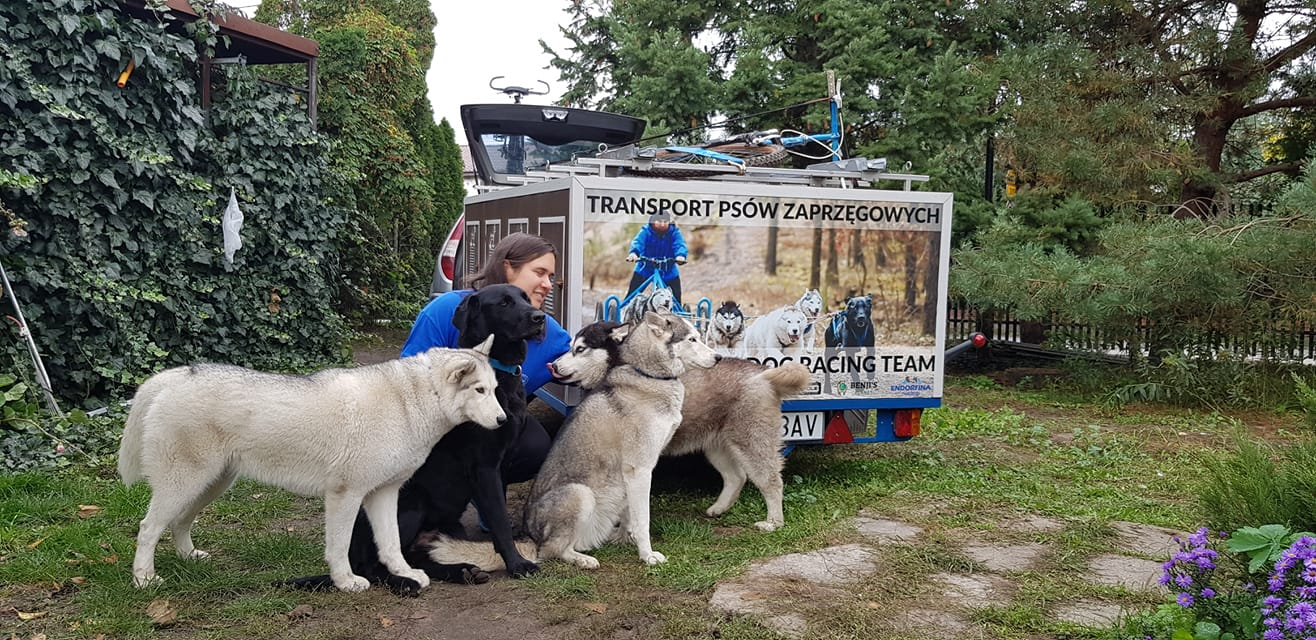 Justyna Gettel prowadzi Shelter Sled Dog Racing Team