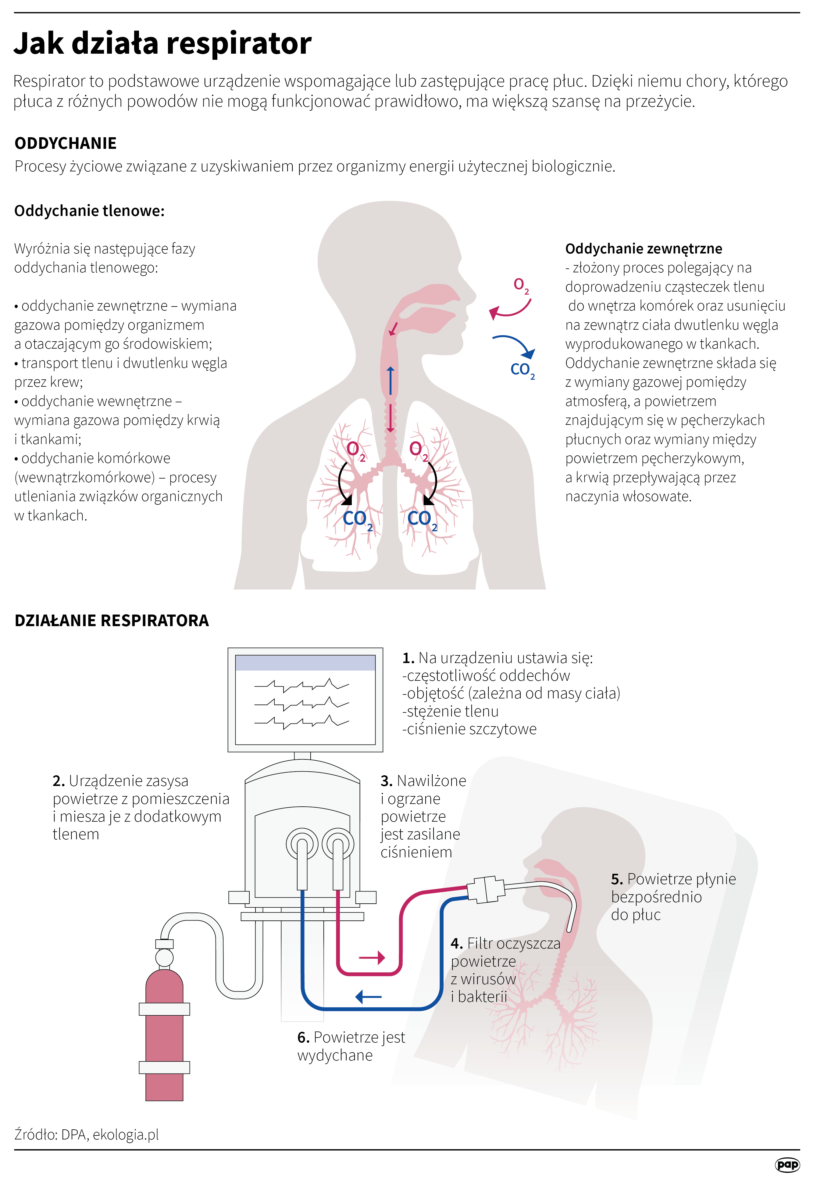 Respirator to podstawowe urządzenie wspomagające lub zastępujące pracę płuc (opr. Maria Samczuk/PAP)