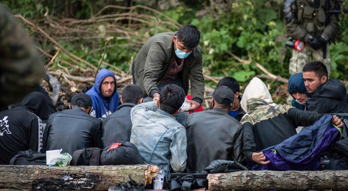 forum migranci usnarz 1200.jpg