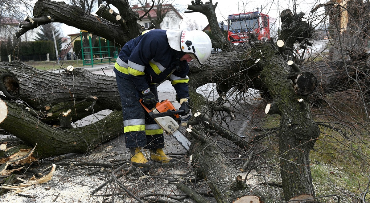 Firefighters remove a fallen tree in the village of Hureczko, in Polands southeastern Podkarpacie region.