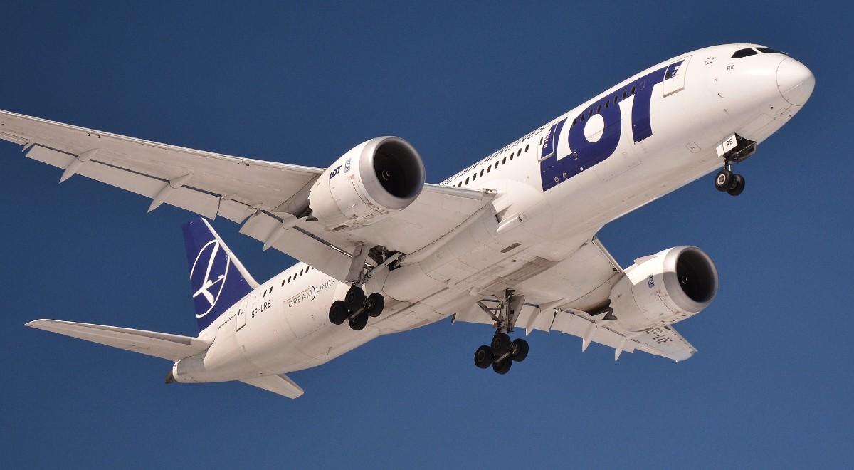 lot boeing 787 dreamliner free pixabay 1200.jpg