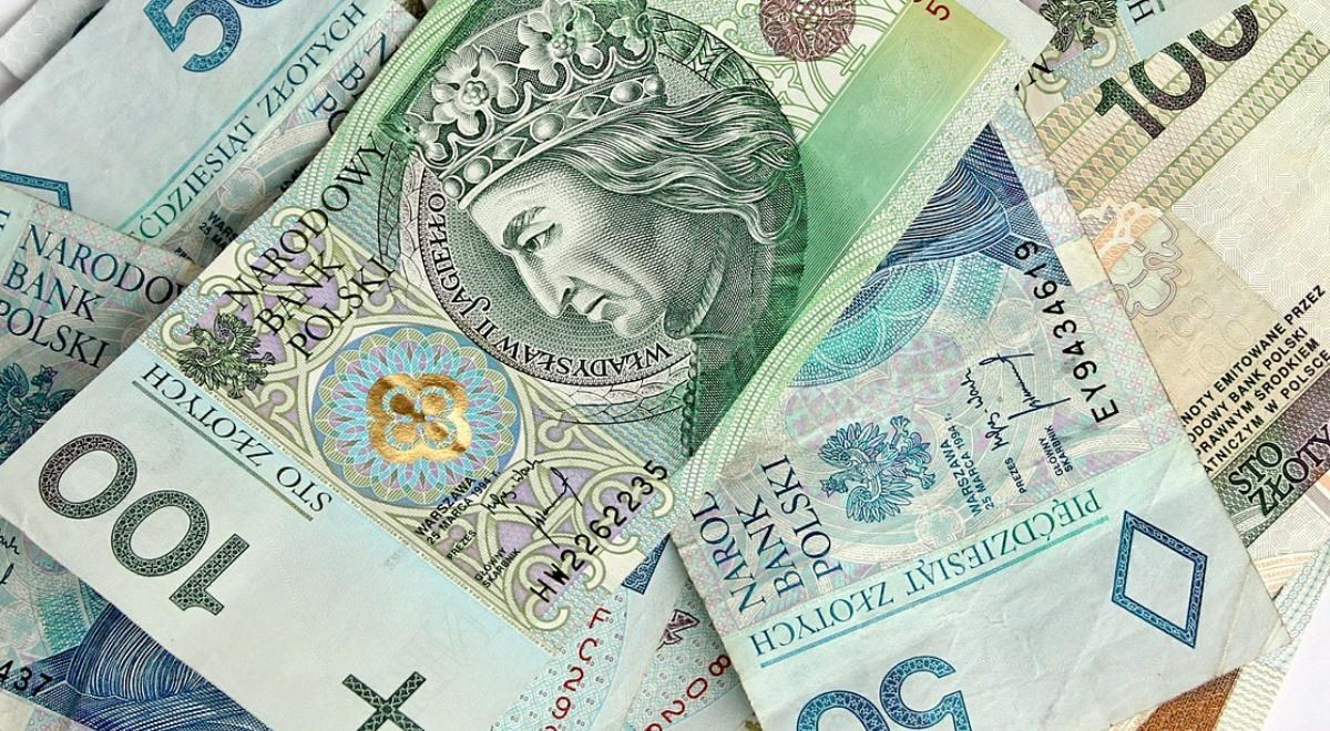 W Zeszłym Roku Złoty Był Najsilniejszą Walutą świata