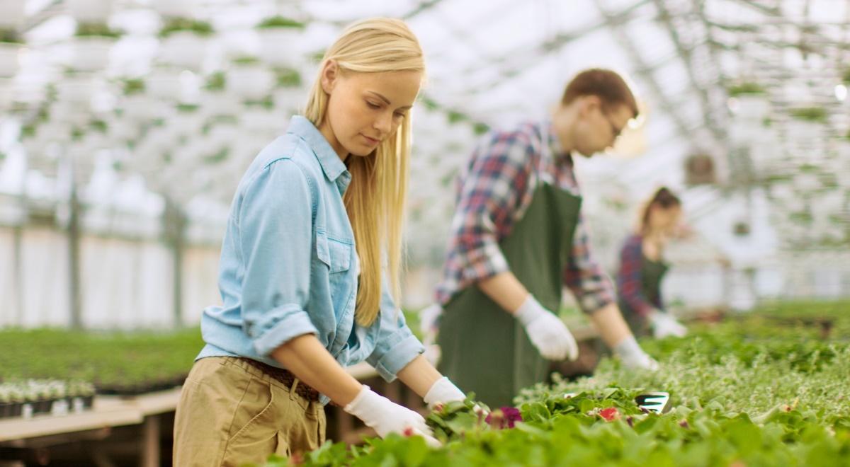 ogrodnicy ogrodnik praca sezonowa 1200.jpg