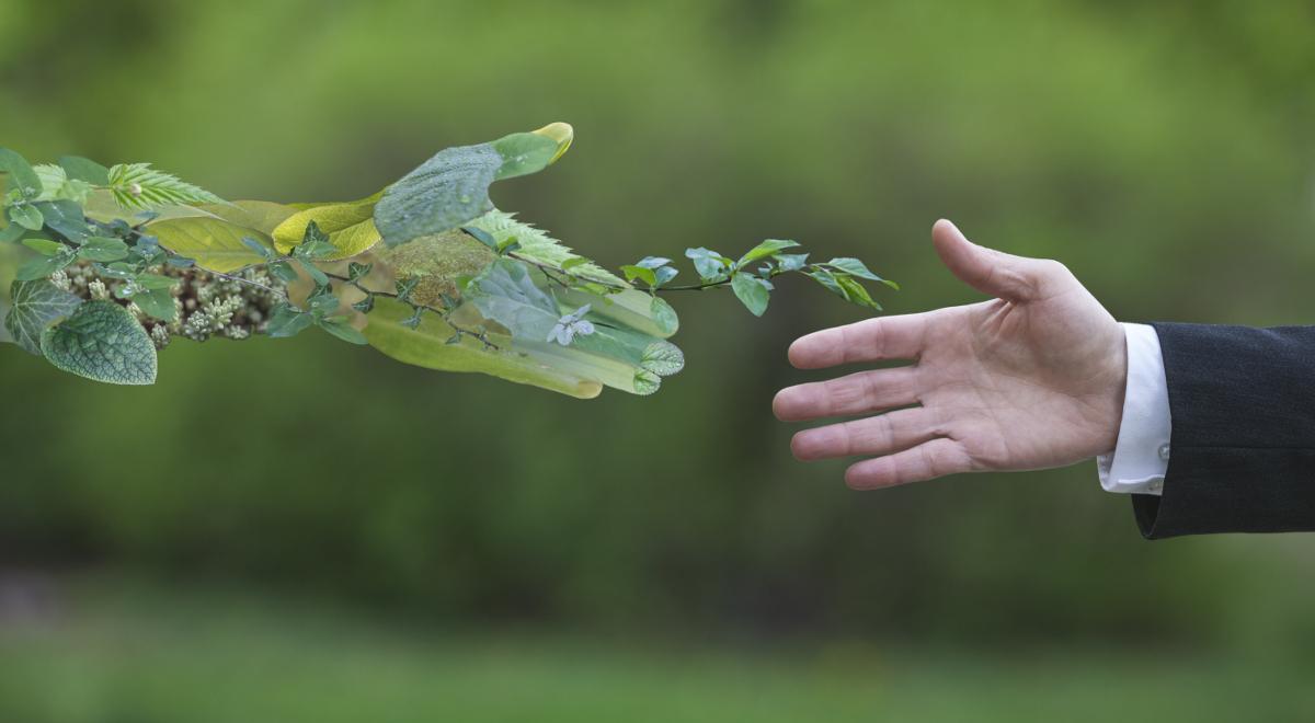 shutterstock ekologia zgoda dłonie 1200.jpg