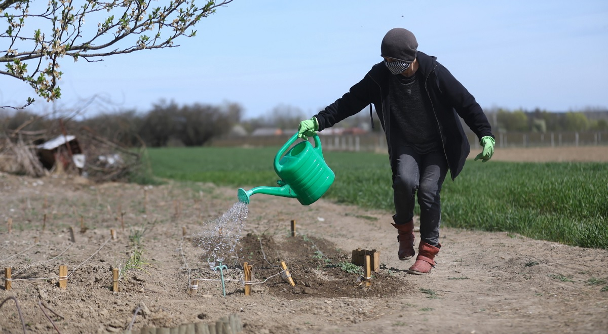 A woman watering a vegetable garden in Ciszyca, southern Poland, 24 March 2020.